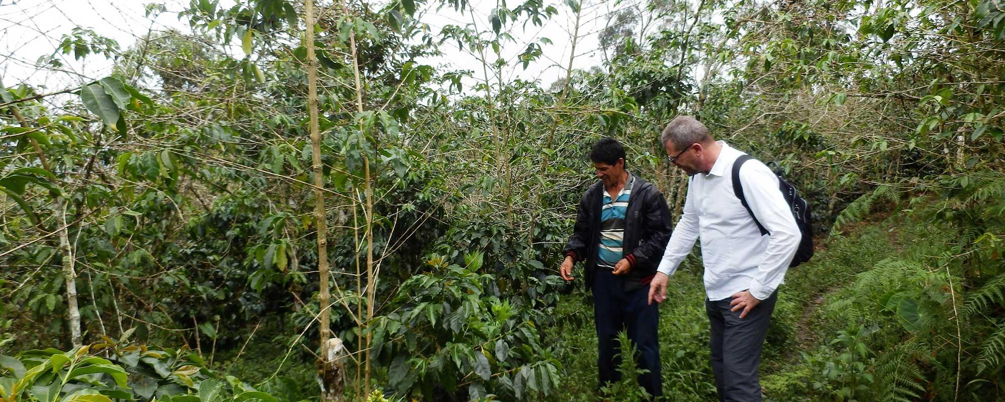 Perù 2017 - Caffè Lelli